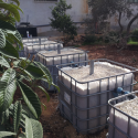 This system was constructed in a household in Deir Hatab. The system will irrigate the beautiful citrus and olive trees in their home.
