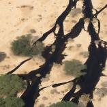 Arava Oil Spill (2)